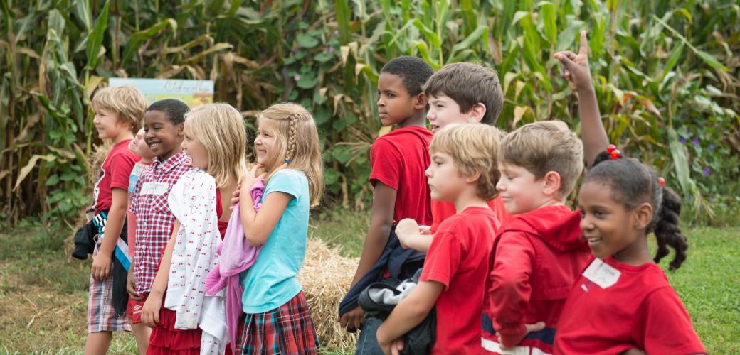 Corn Maze Field Trips